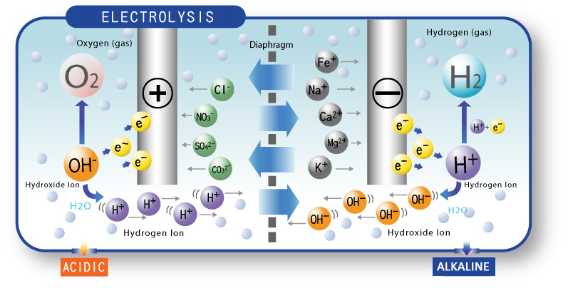 Vì sao người Nhật uống nước điện giải ion kiềm hằng ngày?